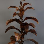 amanda_feher_sculpture_public_art_copper_tobacco_plant