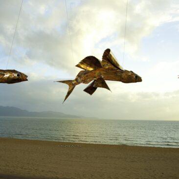 Flight School (Yellow Winged Flying Fish)