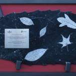 amanda_feher_sculpture_public_art_JCU_marble_leaf