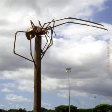 Oralia – Golden Orb Spider