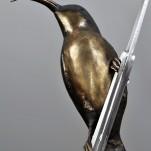 amanda_feher_sculpture_public_art_bronze_and_Stainless_Steel_ Flex_Sunbird_Sculpture_Strand_Townsville_City_Council1